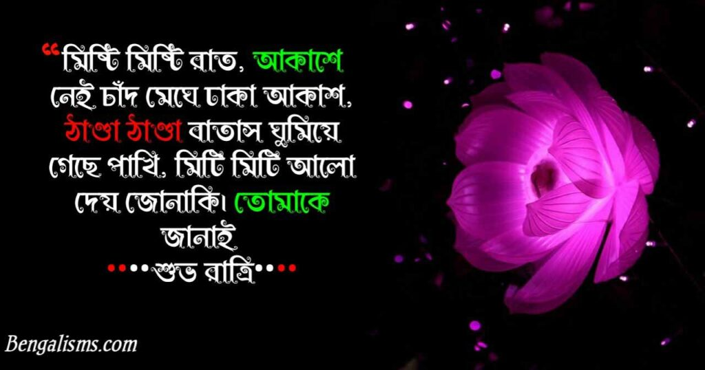 good night bengali shayari
