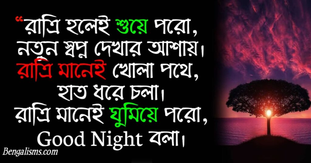 bangla good night